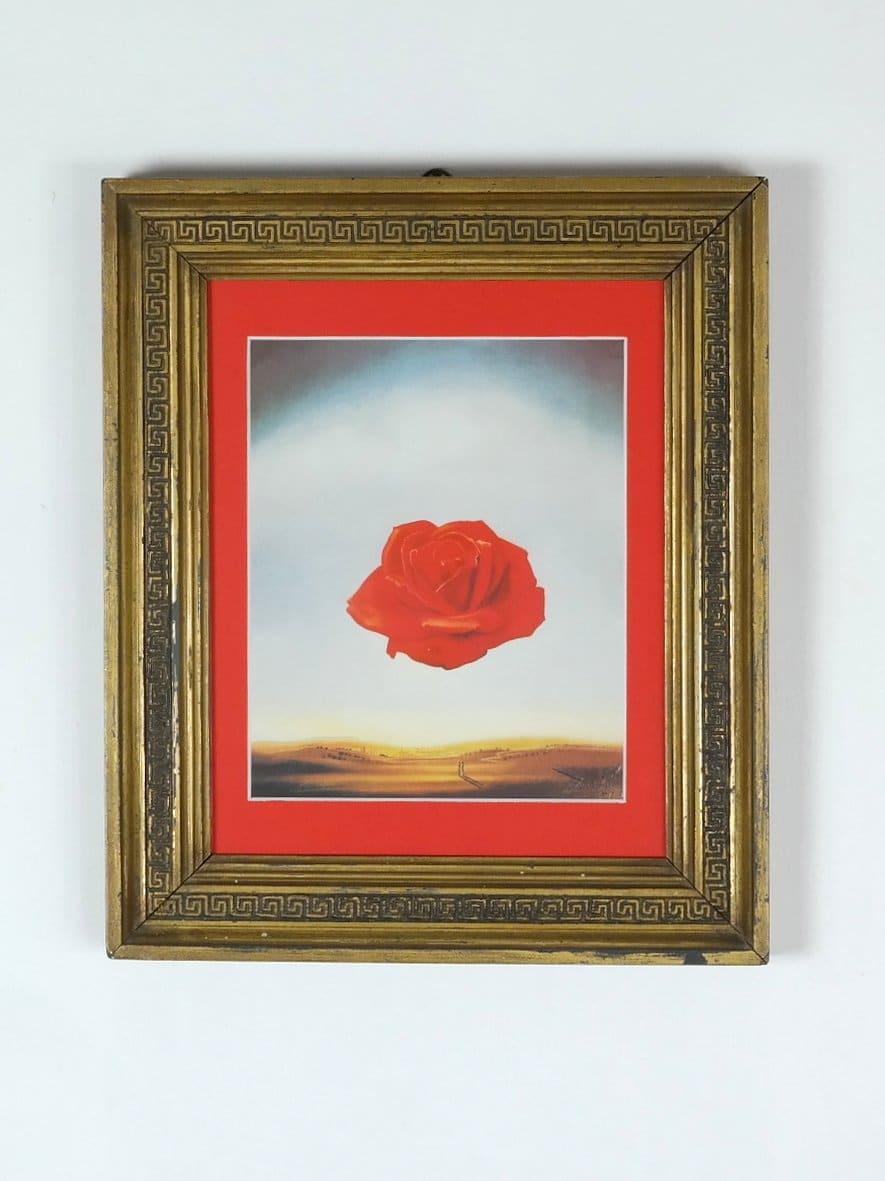 Dalí - Meditatív rózsa